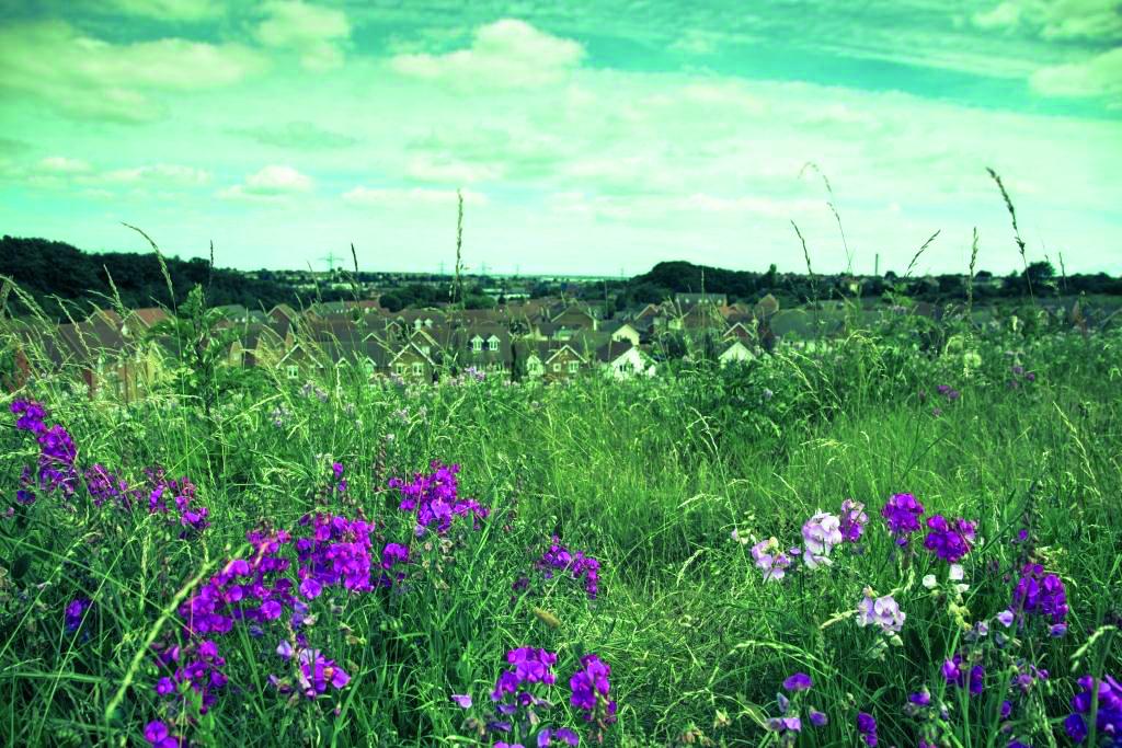 England's hidden brownfield sites