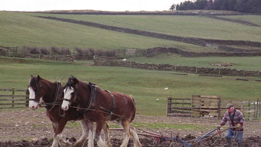 New survey reveals barriers to rural planning development