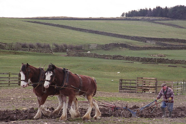 Policymakers must revamp rules for new rural homes